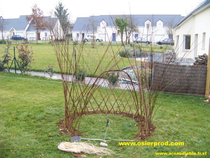 Un jardin d 39 osier vivant et d sactiv osier trait la for Decoration osier pour jardin
